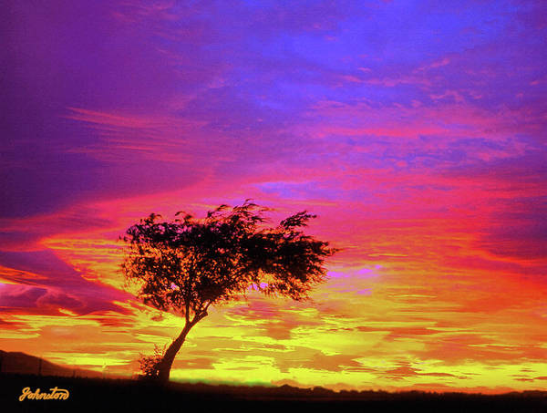 Leaning Tree At Sunset Art Print