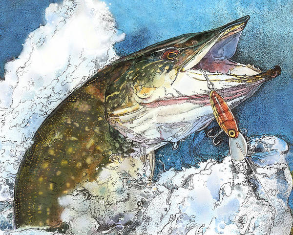 leaping Pike Art Print