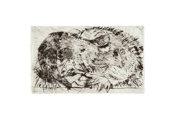 Mixed Media - Learning To Love Rats More #5 by Dawn Boswell Burke