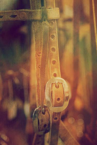 Wall Art - Photograph - Leather Belt  by Toni Hopper