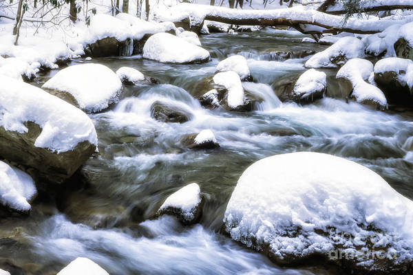 Photograph - Leatherwood Creek And Snow by Thomas R Fletcher