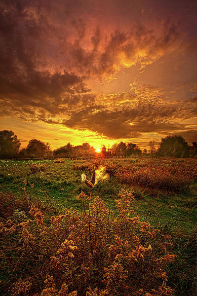 Photograph - Leave A Light On by Phil Koch