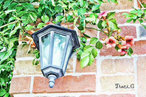 Photograph - Leave The Porch Light On by Traci Cottingham