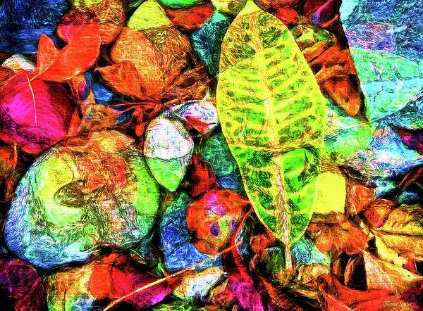 Photograph - Leaves And Rocks Turn Around Abstact by Anna Louise
