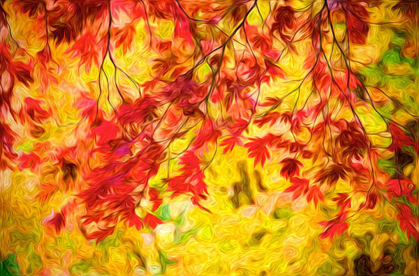 Vancouver Digital Art - Leaves Of Autumn by Julius Reque