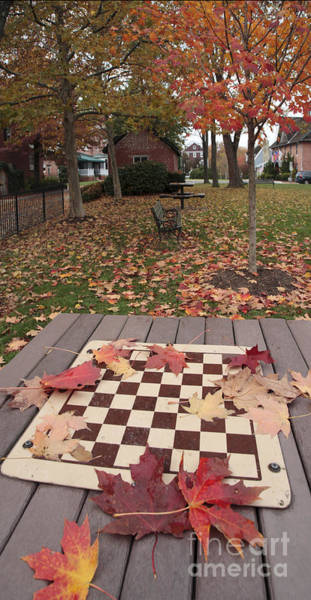 Maryland Wall Art - Photograph - Leaves On An Outdoor Chess Table by William Kuta