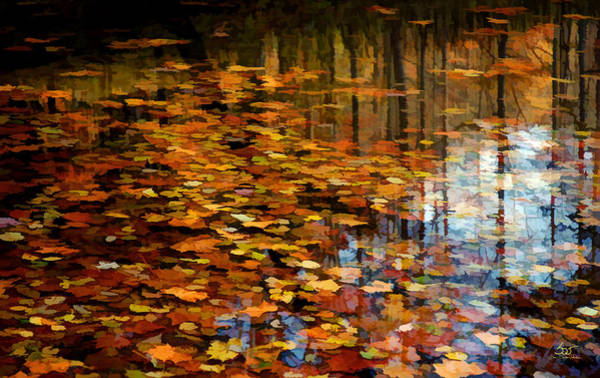 Photograph - Leaves On Water 2 by Sam Davis Johnson