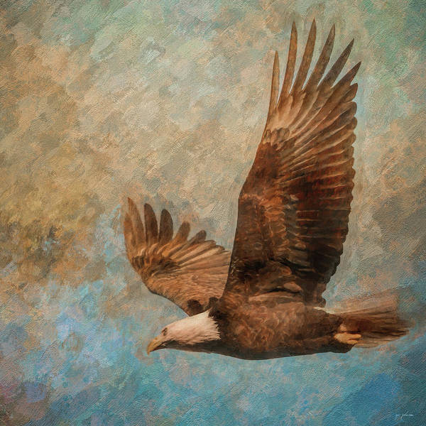 Photograph - Leaving The Nest by Jai Johnson