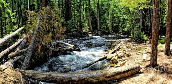 Photograph - Lee Vining Creek by Joe Lach