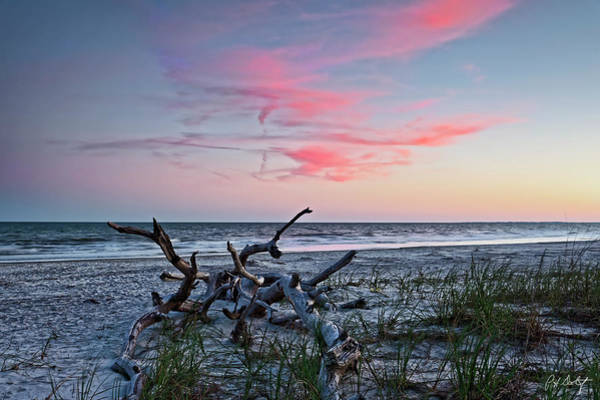 Hilton Head Island Photograph - Left By Matthew by Phill Doherty