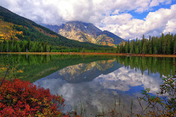 Photograph - Leigh Lake Morning Reflections by Greg Norrell