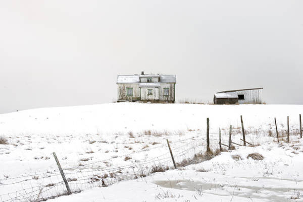 Photograph - Leknes, Lofoten 1 by Dubi Roman