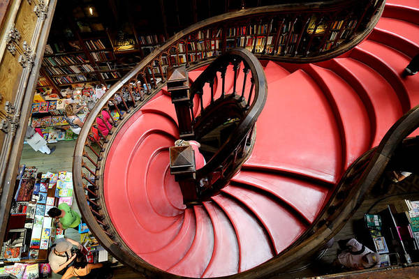 Photograph - Lello Bookstore 2 by Andrew Fare