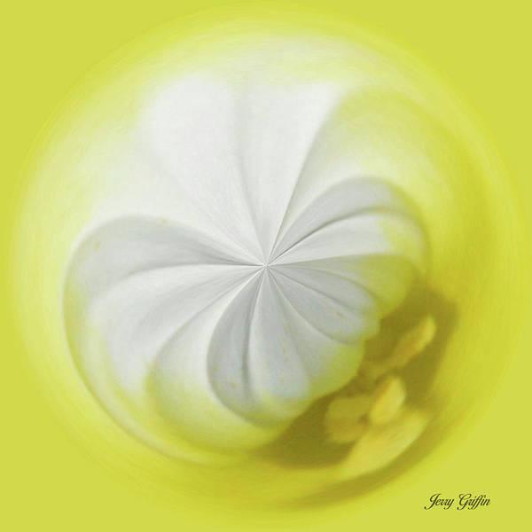 Wall Art - Digital Art - Lemon Pie by Jerry Griffin