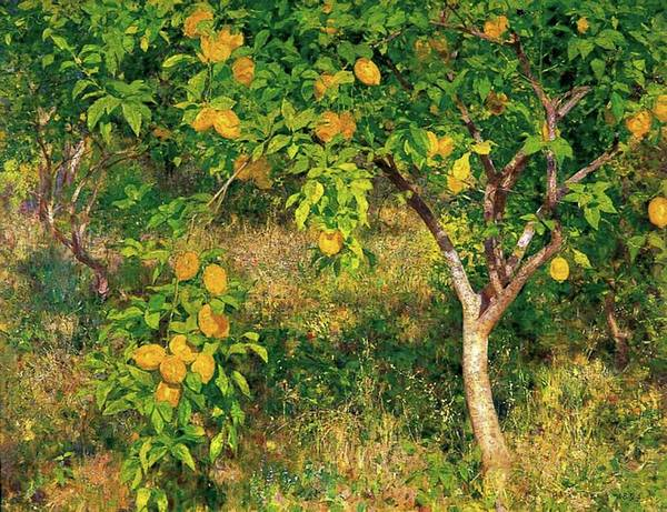 Painting - Lemon Tree by Henry Scott Tuke