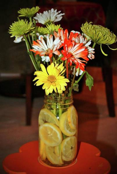 Photograph - Lemon Water For Flowers by Cynthia Guinn