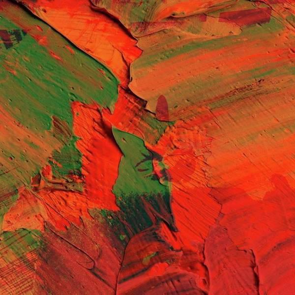 Wall Art - Digital Art - Spot The Cat by Gina Callaghan