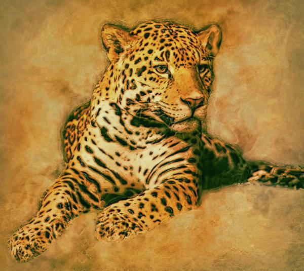Tan Cat Wall Art - Painting - Leopard 3 by Jack Zulli