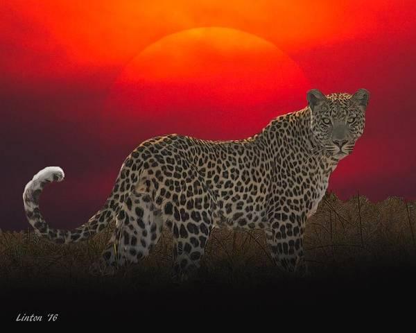 Digital Art - Leopard At Sunset by Larry Linton