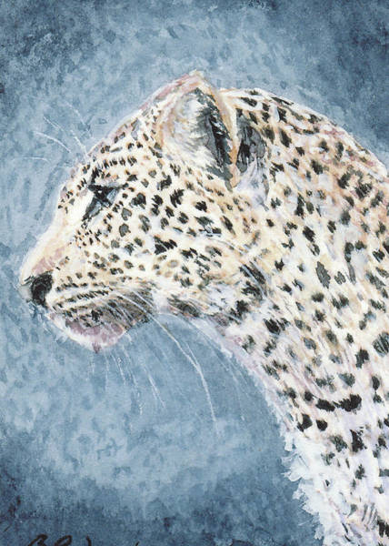 Painting - Leopard by Barry Jones