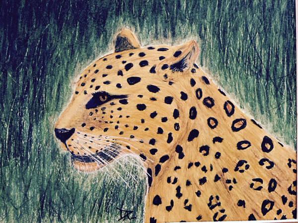 Painting - Leopard by Donald Paczynski