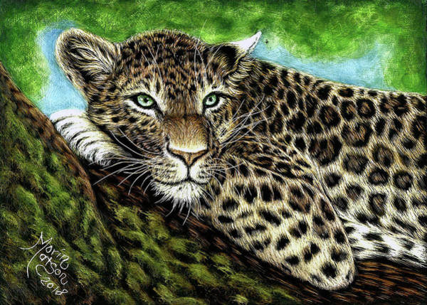 Drawing - Leopard by Monique Morin Matson