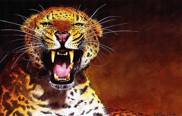 Big Cat Wall Art - Painting - Leopard by Paul Dene Marlor