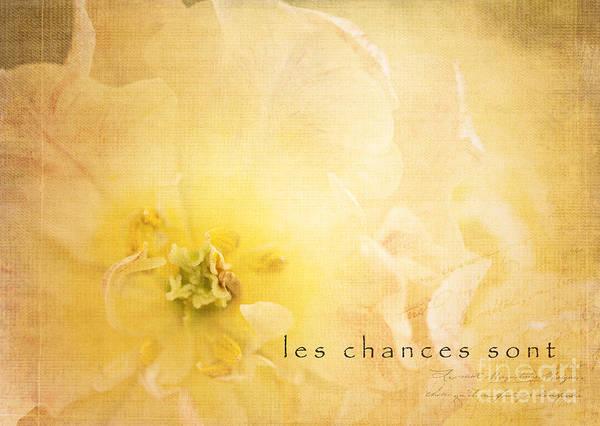 Photograph - Les Chances Sont  by Beve Brown-Clark Photography