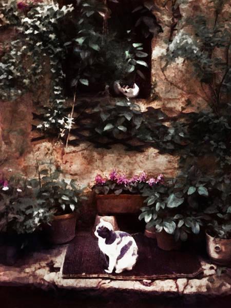 Painting - Les Deux Chats by Menega Sabidussi