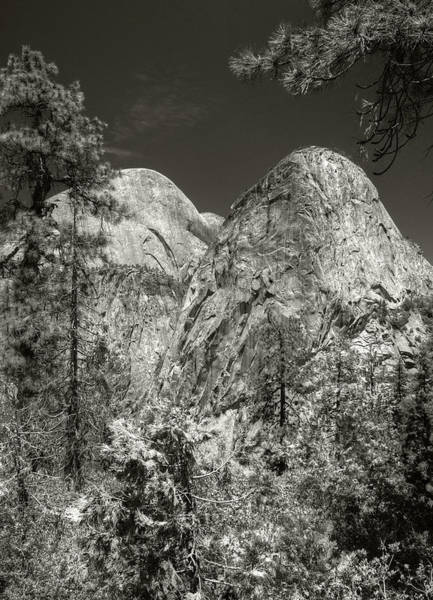 Photograph - Les Grand Tetons by Michael Kirk