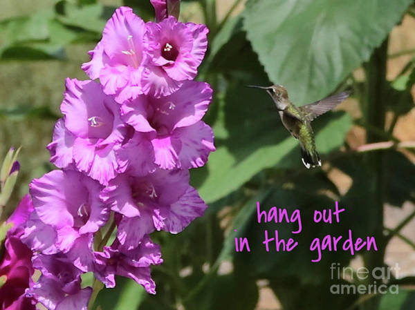 Photograph - Lessons From Nature - Hang Out In The Garden by Carol Groenen
