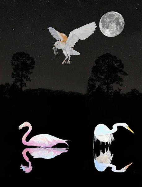 Mixed Media - Lesvos Salt Flat Birds by Eric Kempson