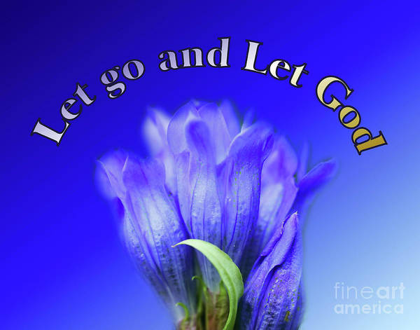 Photograph - Let Go Inspirational Blue Gentian Flower by Smilin Eyes  Treasures