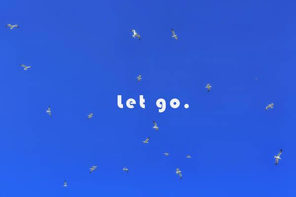 Seabirds Wall Art - Photograph - Let Go by Joana Kruse