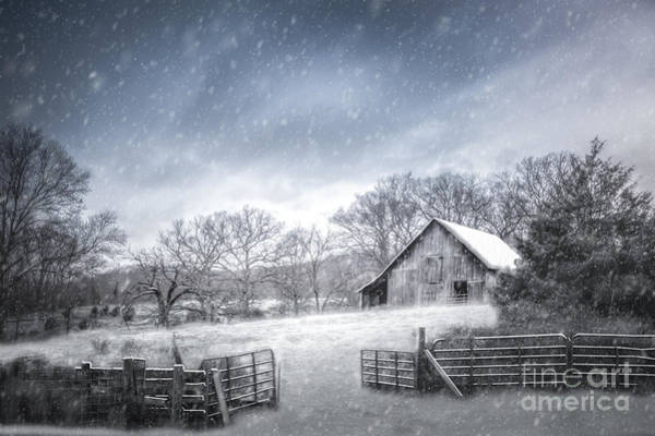 Photograph - Let It Snow by Larry McMahon