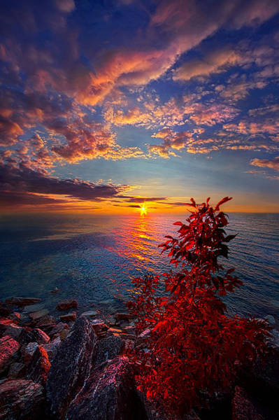 Photograph - Let Me Always Be With You by Phil Koch