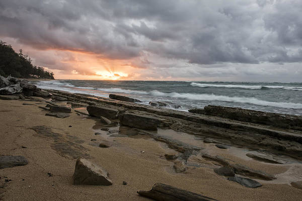 Photograph - Let The Dance Begin by Jon Glaser