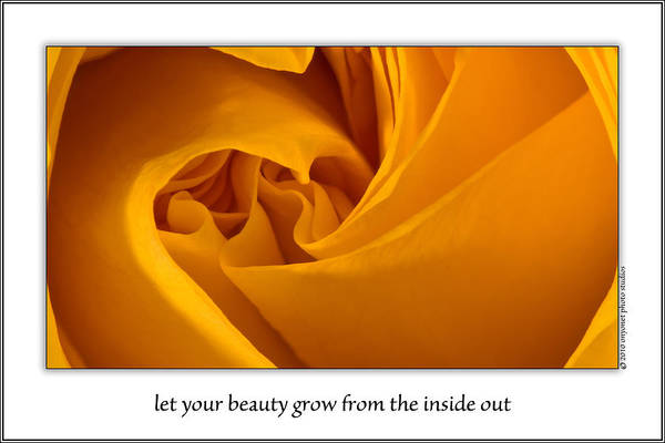 Photograph - Let Your Beauty Grow From The Inside Out by  Onyonet  Photo Studios