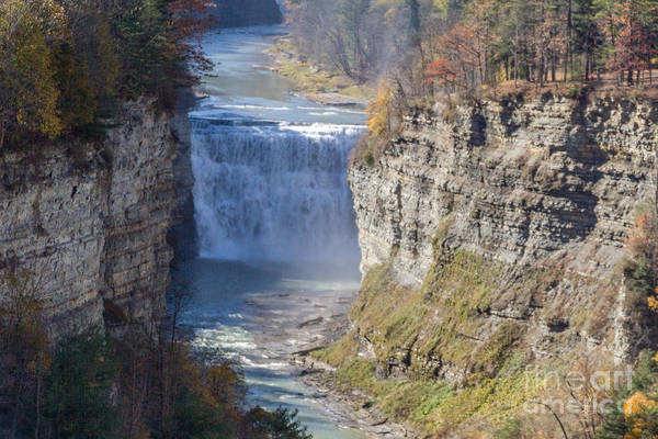 Photograph - Letchworth Middle Falls by William Norton