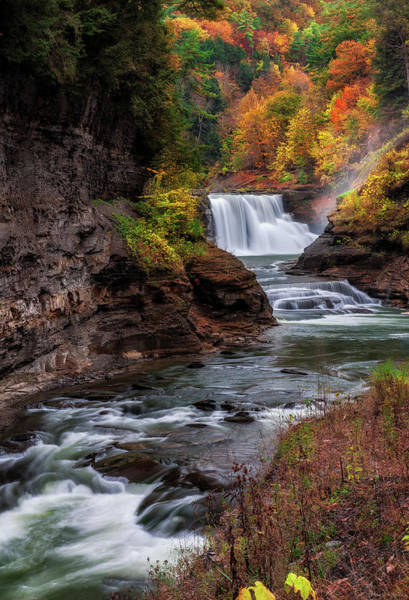 Photograph - Letchworth State Park Lower Falls by Mark Papke