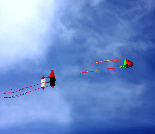 Wall Art - Photograph - Let's Go Fly 2 Kites by Marie Jamieson