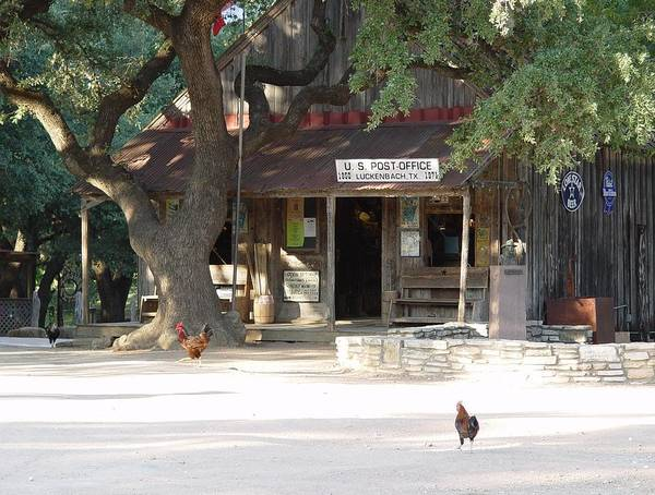 Sullivan County Photograph - Let's Go To Luckenbach Texas by Elizabeth Sullivan