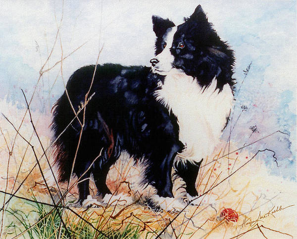 Border Collie Painting - Let's Play Ball by Hanne Lore Koehler