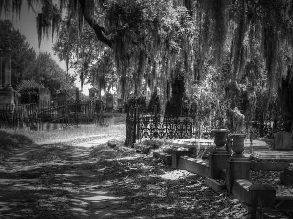 Photograph - Let's Take The Shortcut by Michael Colgate