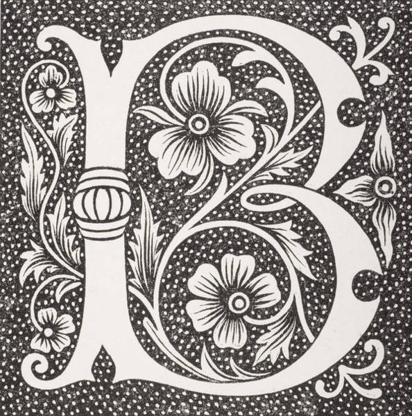Decorative Drawing - Letter B by French School