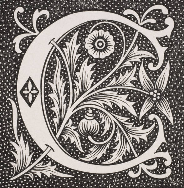 Decorative Drawing - Letter C by French School