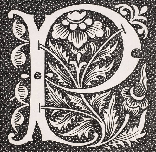 Decorative Drawing - Letter P by French School