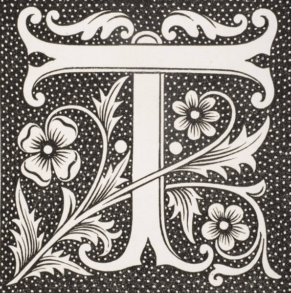 Decorative Drawing - Letter T by French School
