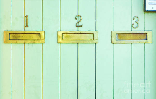 Wall Art - Photograph - Letterboxes On A Wooden Wall by Tom Gowanlock