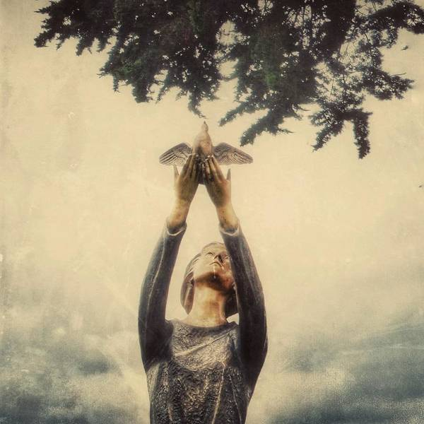 Photograph - Letting Go by Gia Marie Houck